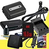 NPFH50 Lithium Ion Replacement Battery w/Charger + 16GB SDHC Memory Card + Mini HDMI + USB SD Memory Card Reader /Wallet + Deluxe Starter Kit for Sony DCRDVD508, DCRDVD408, DCRDVD308, DCRDVD108, DCRDVD505, DCRDVD405, DCRDVD305, DCRDVD205, DCRDVD105, DCRDV