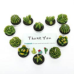 Toopeek Cactus Decor,Cactus Tealight Candles, Handmade Delicate Succulent Cactus Candles Valentine's Day Birthday Party Wedding Spa Home Decoration (Cactus Candles(12 in Pack))