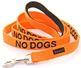 NO DOGS Orange Color Coded 6 Foot Padded Dog Leash (Not Good With Other Dogs) PREVENTS Accidents By Warning Others of Your Dog in Advance