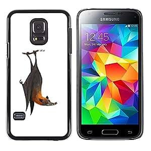 Paccase / SLIM PC / Aliminium Casa Carcasa Funda Case Cover - Bat Cute Cool White Grey Animal - Samsung Galaxy S5 Mini, SM-G800, NOT S5 REGULAR!