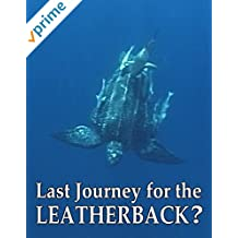 Last Journey for the Leatherback?