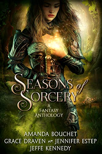 Image result for season of sorcery book cover