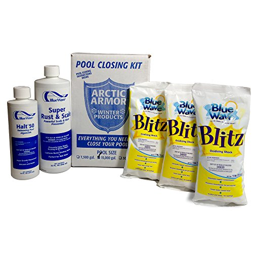 (Blue Wave Large Chlorine Free Pool Winterizing Kit)