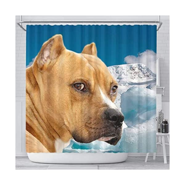 Pawzglore American Staffordshire Terrier Print Shower Curtains 1