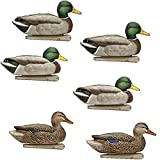 AvianX Top Flight Duck Open Water Mallard Decoy (6 Pack), Green (3-Units)
