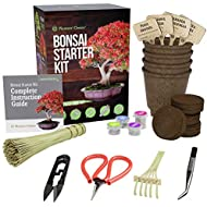 Bonsai Starter Kit + Tool Kit - The Complete Kit to Easily Grow 4 Bonsai Trees from Seed with Comprehensive Guide & Bamboo Plant Markers - Unique Gift Idea