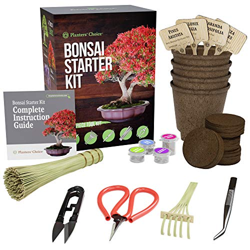(Bonsai Starter Kit + Tool Kit - The Complete Kit to Easily Grow 4 Bonsai Trees from Seed with Comprehensive Guide & Bamboo Plant Markers - Unique Gift Idea)