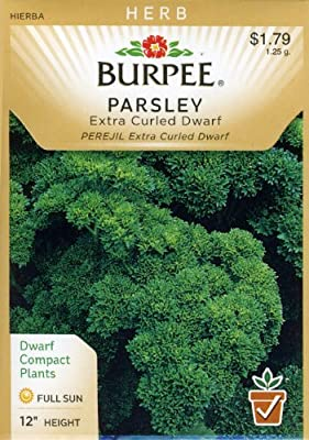 Burpee 56853 Herb Parsley, Extra Curled Dwarf Seed Packet
