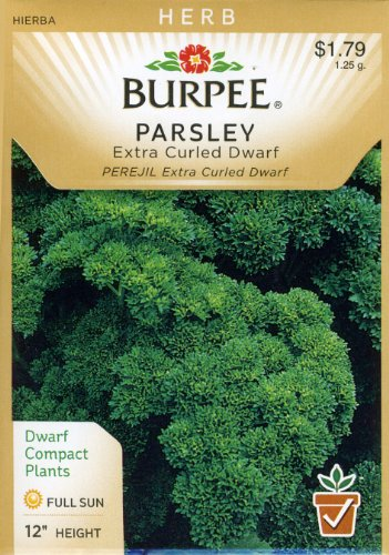 Burpee 56853 Herb Parsley, Extra Curled Dwarf Seed Packet ()