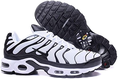 Nike Air Max Plus TN Noire et Blanc (41): Amazon.fr ...