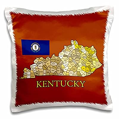 777images Flags and Maps - States - Flag and Map of Kentucky Counties in colors, brick red background - 16x16 inch Pillow Case (pc_186870_1)