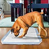 OUT! Dog Pad Holder | Portable Tray for Pet