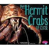 Pet Hermit Crabs Up Close (Pets Up Close)