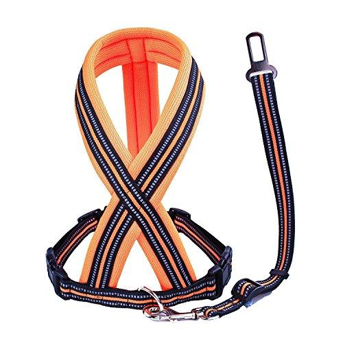 X-large Bright Reflective Safety Vests - 6