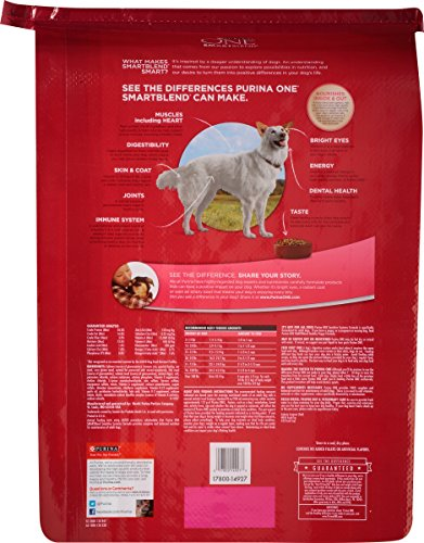 Purina-ONE-SmartBlend-Sensitive-System-Dry-Dog-Food-1-31-lb-Bag