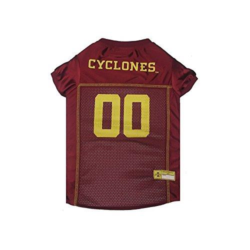 Iowa State Cheerleader Costume (Iowa State Cyclones Dog Jersey)