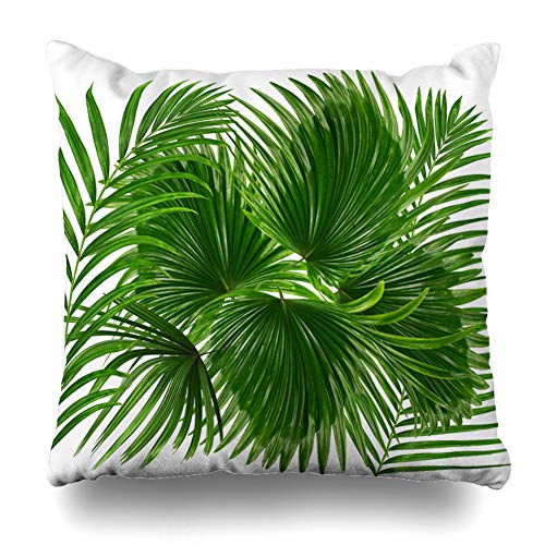 Ahawoso Throw Pillow Cover Square 16x16 Hang Bend Green Leaves Palm Tree On White Closeup Nature Arch Betel Botany Branch Bush Ramus Zippered Cushion Case Home Decor Pillowcase
