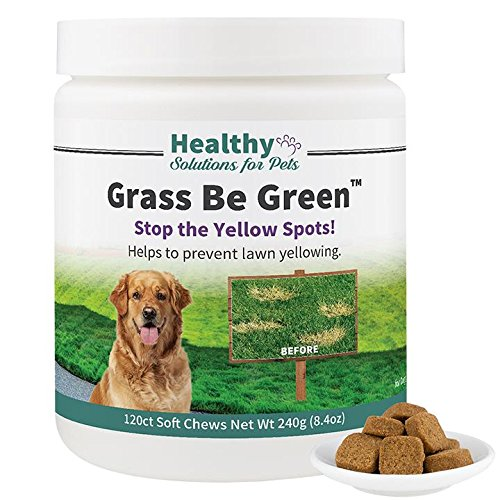 No More Yellow Spots on Your Grass, Stop The Grass Burn and Pee Stains with Our Grass Be Green Solution, Made in The USA by Healthy Solutions for Pets