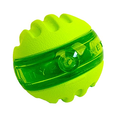 Hyper Pet Dura-Squeaks Sphere Dog Toy