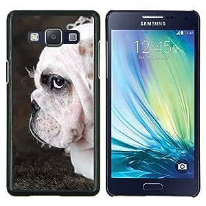 Bulldog Inglés Perro arrugado británica- Metal de aluminio y de plástico duro Caja del teléfono - Negro - Samsung Galaxy A5 / SM-A500