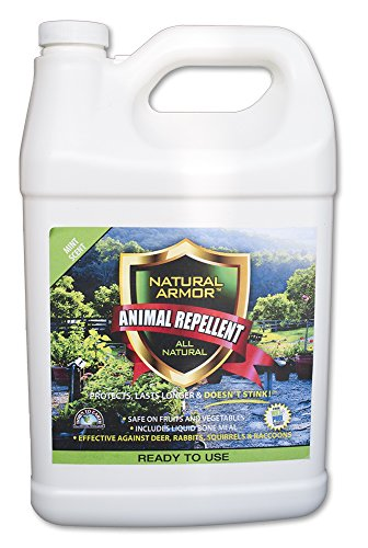 Repellent Spray for Rodents & Animals. Cats, Rats, Squirrels, Mouse & Deer. Repeller & Deterrent for Dogs, Critters, Mice, Raccoon & Skunk. Natural Armor Mint Gallon Ready to Use