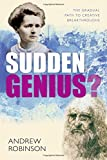 Sudden Genius: The Gradual Path to Creative Breakthroughs