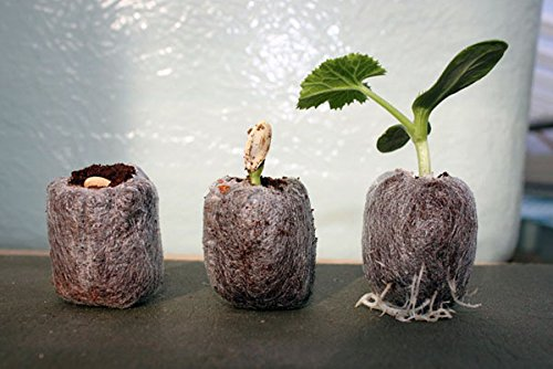 JIFFY 7C PEAT FREE COIR PROPAGATION PELLETS X 50 (30MM X 38MM) Premier Seeds Direct