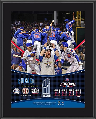 Chicago Cubs 2016 MLB World Series Champions 10.5
