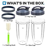 Tanzfrosch 2 Pack Replacement Parts 32oz Cups with