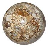 Jasper Ball Snake 04 Brown White Blue Serpent Skin Crystal Spirit Animal Sphere 3.4''