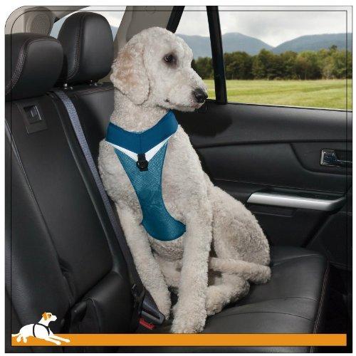 kurgo dog harness how to put on