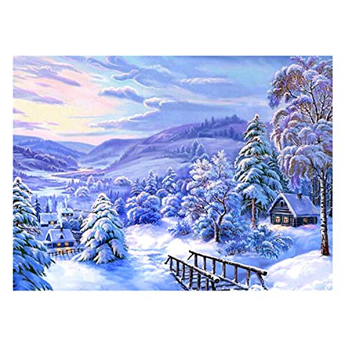 Diy 5D Diamond Painting Kits, Full Canvas Painting With Diamonds For Adults, Paint By Diamonds For Dream Home Decoration Art Craft 9.8X11.8 Inches, Snowflake -