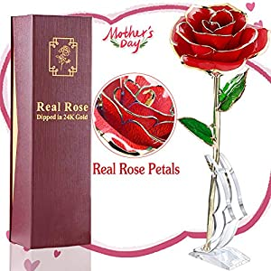Mother's Day Gifts 24K Gold Dipped Real Rose Everlasting Rose for Mom, Forever Flower Anniversary Gifts for Her, Women Girls Wedding Birthday Presents(with Moon Stand, Gift Box) 1