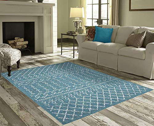 PRIYATE Florida Collection All Weather Indoor/Outdoor Bohemian Motif Rug for Living Room, Bedroom, and Dining Room (5'3