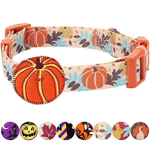 "Blueberry Pet 8 Patterns Thanksgiving Fall Harvest Festival Pumpkin Designer Dog Collar with Decoration, Medium, Neck 14.5""-20"", Adjustable Collars for Dogs"