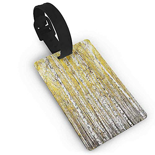 New Creative Luggage Tags Forest,Autumn Birch Forest Golden Leaves Woodland October Seasonal Nature Picture Print,Yellow Grey One Size Suitcase Tag