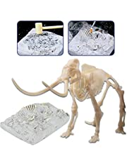deAO Esqueleto Fósil de Dinosaurio Kit de Paleontología Figura de Juguete con Huesos Simulados Actividad Educativa Infantil