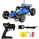 ALY S535 RC Hobby Dune Buggy High Speed Formula Radio Control Racing Car Toy 1/14 RTR 4WD ATV Truck (Blue)