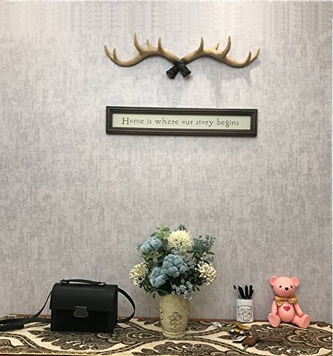 Deer Antlers Coat Hat Rack Rustic Entryway Wall Mounted - Necklace Holder with 10 Hooks for Hanging Caps,Keys,Umbrella,Purse and more