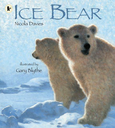 Image result for ice bear nicola davies
