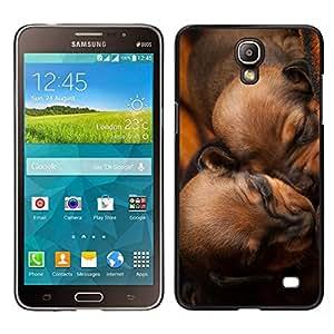 EJOY---Cubierta de la caja de protección para la piel dura ** Samsung Galaxy Mega 2 ** --Los cachorros de dormir de Brown Chesapeake Perro