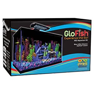 Amazon Com Glofish 10 Gallon Aquarium Kit Pet Supplies