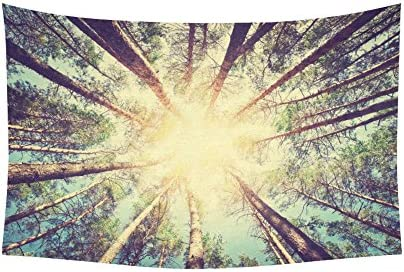 INTERESTPRINT Woodland Wall Art Home Decor, Retro Vintage Style Forest with Sunlight Tree Branches Tapestry Wall Hanging Art Sets 90 X 60 Inches