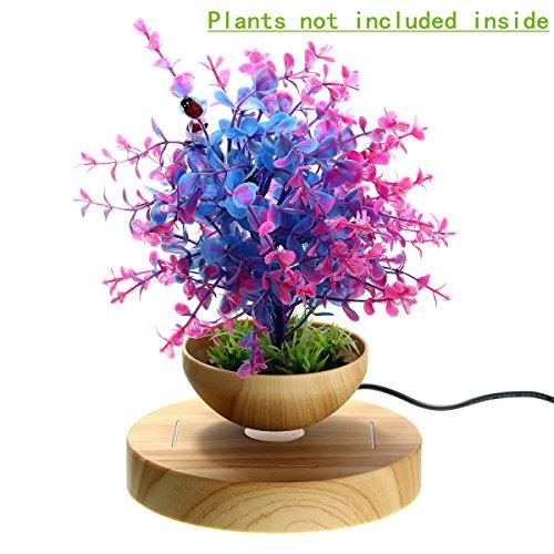 Mini led levitating 3 5 inch air bonsai pot pathonor for Levitating plant