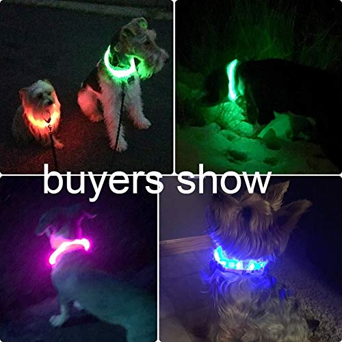 Illumifun Led Dog Collar, USB Rechargeable TPU Cuttable Light Up Collar Make Your Dogs Seen & Safe in the Dark (Candy Pink)