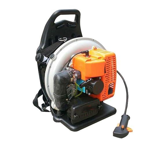 Amazon.com: DNYSJ soplador de hojas, 65 cc, mochila ...