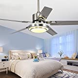 Andersonlight Stainless Steel 48'' Ceiling Fan for Modern Living Room Iron Leaves Remote Control Dimmable White/ Warm/ Yellow 3 Light Change LED Mute Energy Saving Electric Fan Lamp Kit Silver