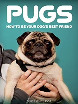 Best Dog Leash For Pugs