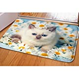 Funny Cat Doormat Indoor Home Pool Kitchen Beautiful Shower Bathroom Area Soft Square Rug Doormats For Thanksgiving Christmas Winter House Decoration CA5035CN