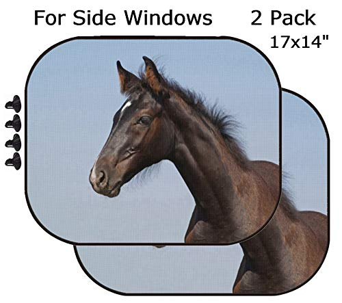 MSD Car Sun Shade - Side Window Sunshade Universal Fit 2 Pack - Block Sun Glare, UV and Heat for Baby and Pet - Image ID 20447879 Portrait of foal of Warmblood Breed on a Background Blue sk